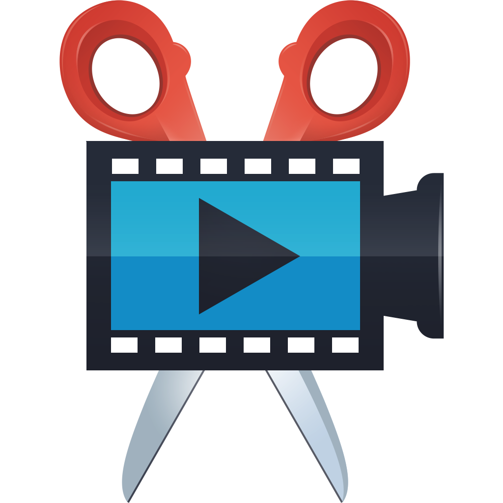 Movavi Video Editor 21.1.0 Crack Plus Activation Key Free 2021 [Mac/Win]